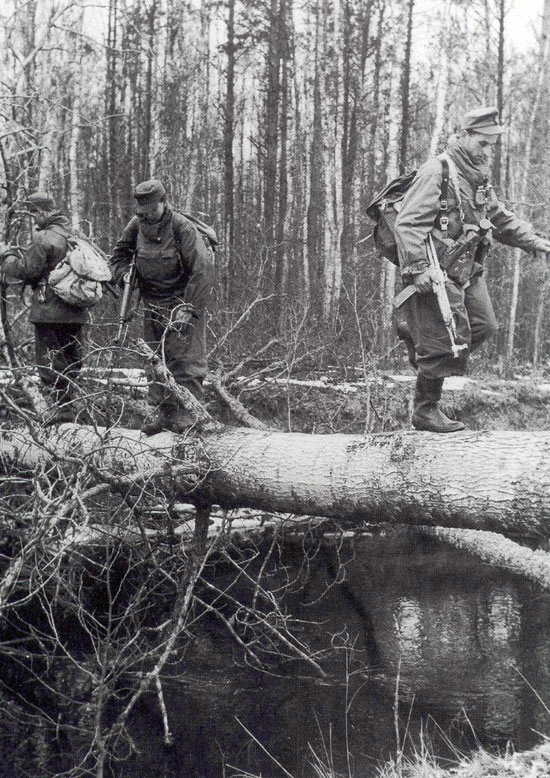 Soldier on Log Left - G43