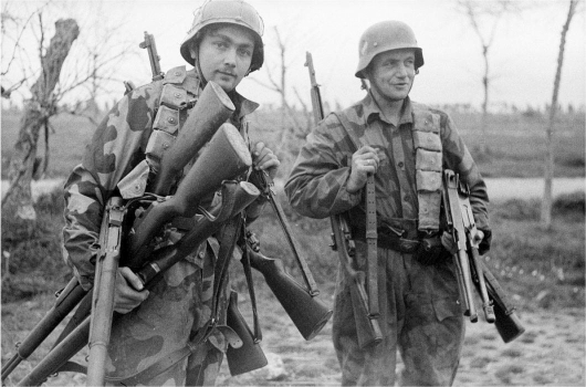 German Soldiers with American Weapons