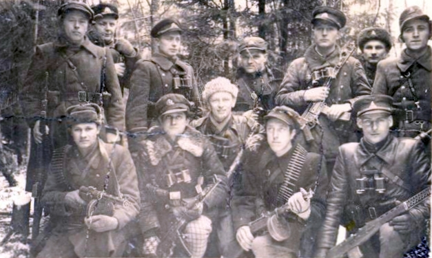 Lithuanian Partisans Group - SVT-40